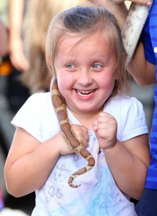 Respond Lucan little snake